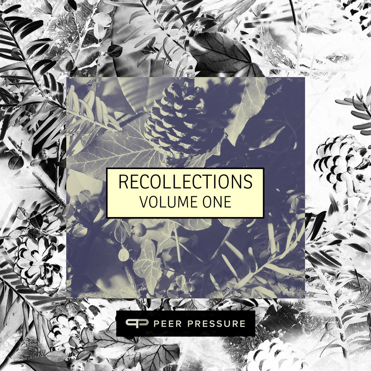 Peer Pressure Records – Recollections Vol.1
